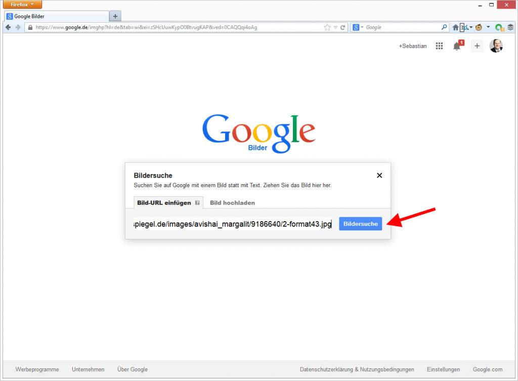 Google Bildersuche nach URL. © Google