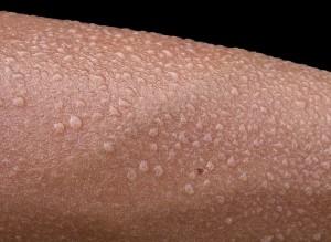 gouttes de transpiration sur peau humaine. foto: Minghong, CC-BY-SA-3.0, via Wikimedia Commons